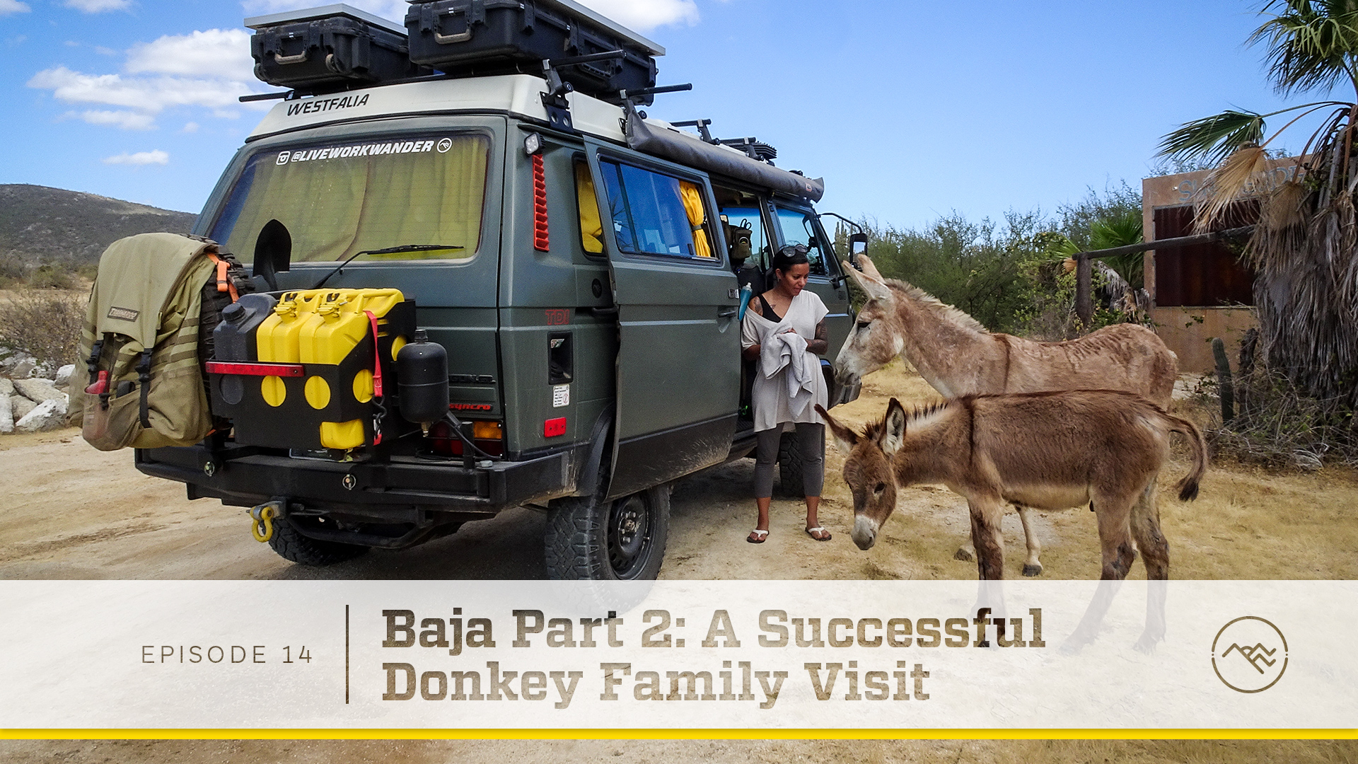 E014 : Baja Part 2 - A Successful Donkey Family Visit